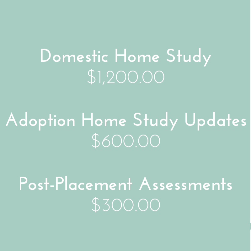Love and Hope Adoptions pricing